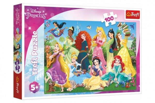 Puzzle Pôvabné Princeznej / Disney 100 Dielikov 41X27,5Cm V Krabici 29X19x4cm